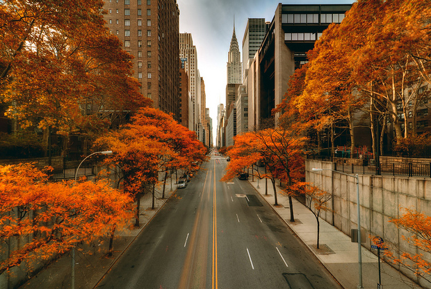 Fall-in-New-York-City