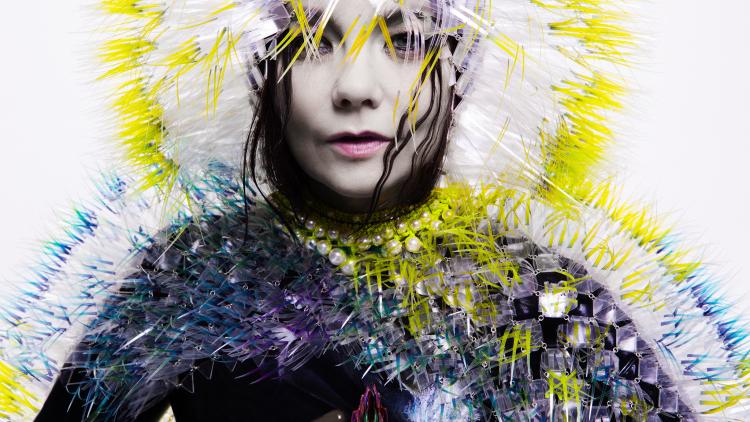 Photograph: Inez & Vinoodh Björk