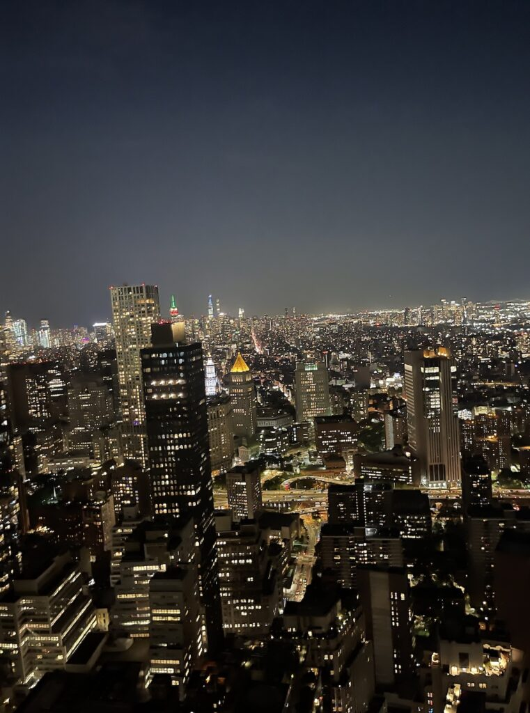 Claudia Saez Fromm share views from the top of Overstory in Financial District